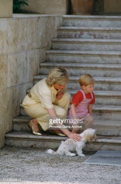 Diana, Princess of Wales with her son Prince Harry whilst on holiday with the Spanish royal family at the Marivent Palace in Palma de Mallorca,...