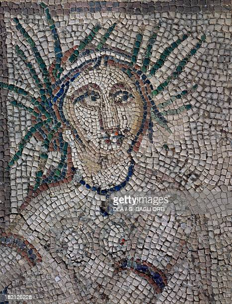 Diana's companion Diana surprised by Actaeon while bathing mosaic in the House of the Procession of Venus ancient Roman city of Volubilis Morocco...