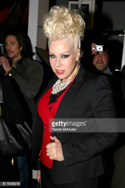 Diane Brill attend 8th Annual BoCONCEPT/KOLDESIGN Holiday Party at Bo Concept Madison Ave on December 14th 2010 in New York City