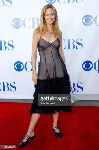 Diane Farr nudes (52 pictures) Boobs, 2018, legs