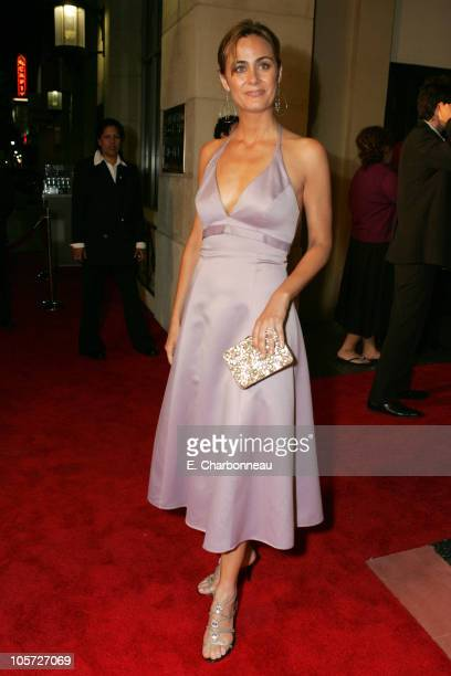 Diane Farr during The 57th Annual Emmy Awards TV Guide and Inside TV After Party Arrivals at Hollywood Roosevelt Hotel in Hollywood California United...