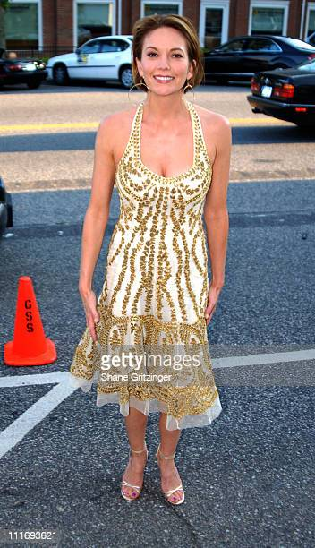 """Diane Lane during Focus Features Presents A Special Screening Of """"HOLLYWOODLAND"""" - July 30, 2006 at United Artists Theatre in Southampton, New York,..."""