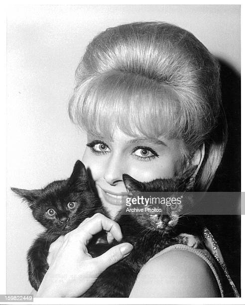 Diane McBain holds two kittens in publicity portrait for the film 'Spinout' 1966