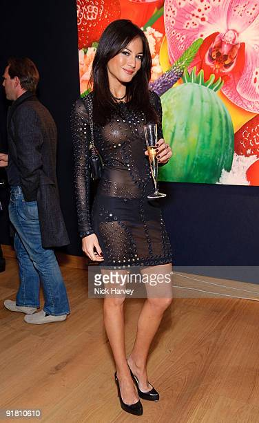 Diane Stafrace attends reception hosted by Graff held in aid of FACET at Christie's King Street on October 12 2009 in London England