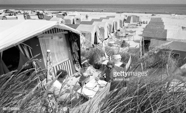 Dicht an dicht stehen die Zelte auf dem kilometerlangen Zeltplatz im Ostseebad Prerow auf dem Darß aufgenommen im Juli 1983 Familie Pelzel aus...