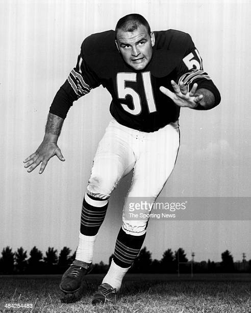 Dick Butkus of the Chicago Bears poses for a photo circa 1960s.