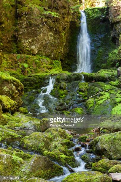 dickson falls i - wolfgang wörndl stock pictures, royalty-free photos & images