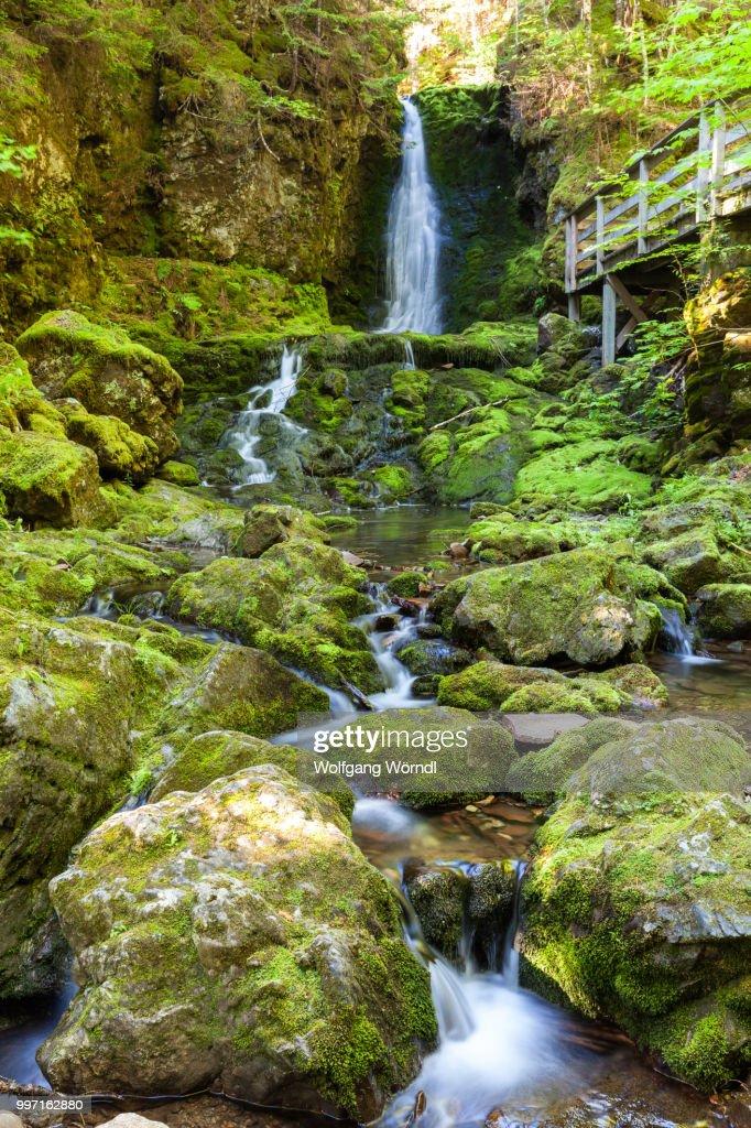 Dickson Falls II : Stock-Foto