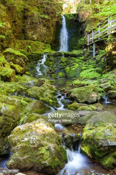 dickson falls ii - wolfgang wörndl stock pictures, royalty-free photos & images