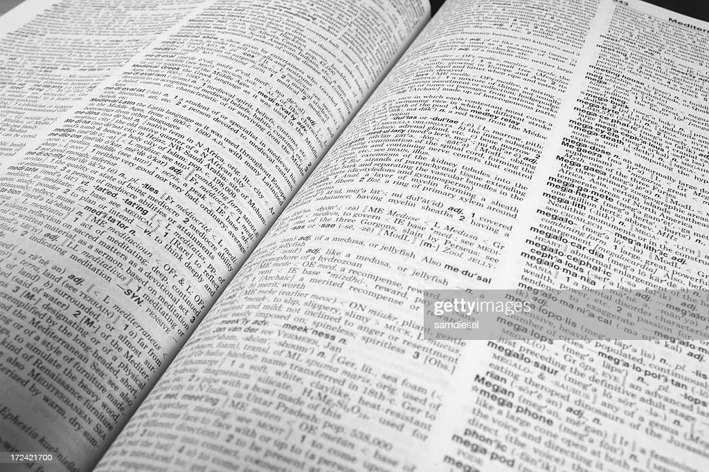 Dictionary Opened : Stock Photo