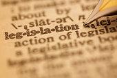 Dictionary Series : Legislation