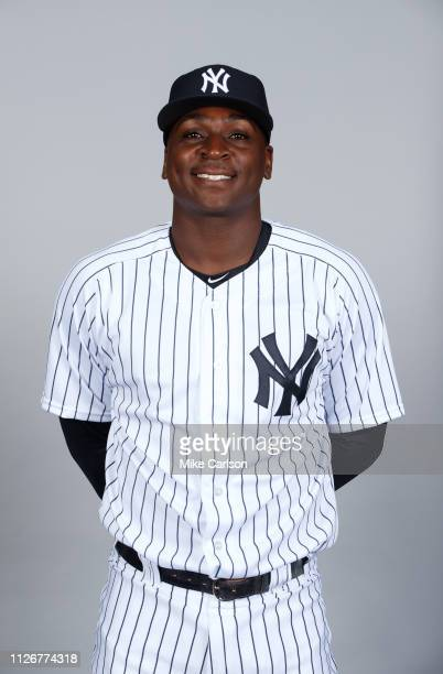 Didi Gregorius of the New York Yankees poses during Photo Day on Thursday February 21 2019 at George M Steinbrenner Field in Tampa Florida