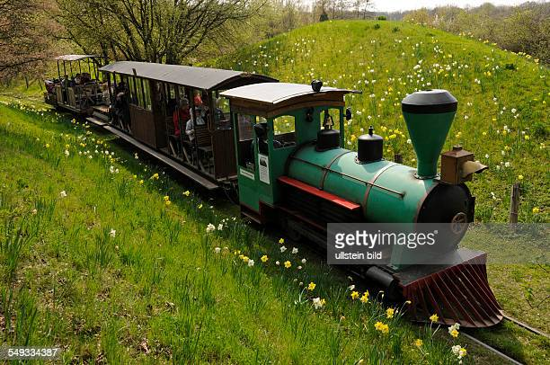Die Britzer Museumsbahn verkehrt auf einem fünf Kilometer langem Rundkurs durch den 90 Hektar großen Britzer Garten in BerlinBritz Frühlingsblüher...
