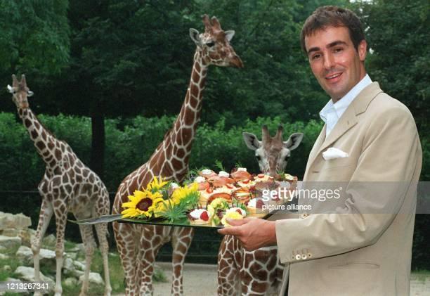 Die Giraffen im Frankfurter Zoo recken am 1471997 ihre Hälse nach den Leckereien von SzeneGastronom KlausPeter Kofler dessen Firmenzentrale sich im...