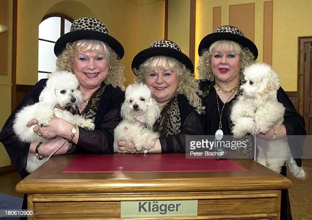 """Die Jacob Sisters mit ihren Pudeln, Fotos zur ZDF-Serie """"Streit um Drei"""", Berlin, Deutschland, Europa, Pudel, Tier, Hund, Gerichtssaal, Gericht,"""