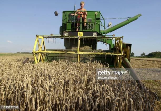 Die Landwirte im Rheinland nutzen jede Minute um die Ernte einzufahren da die Wettervorhersage wenig Hoffnung auf eine längere Trockenperiode macht...