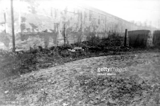 Die Leiche des Mordopfers Gertrud Albermann auf einem Acker neben einer Mauer Am 22 April 1931 wurde Peter Kürten wegen Mordes in neun Fällen und...