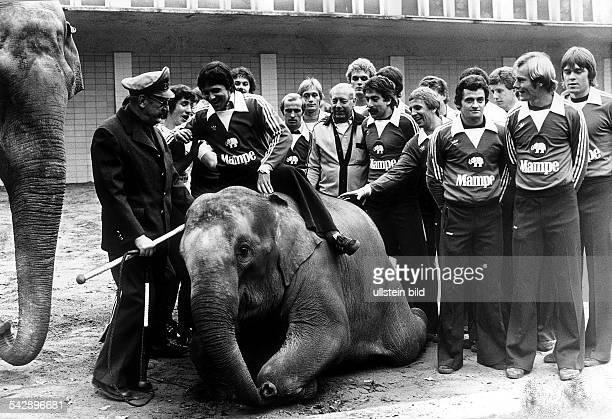 Die Mannschaft von Hertha BSC in den neuen Trikots des Sponsors 'Mampe' bei einem Besuch im Berliner Zoo, wo die Firma Mampe einen Elefanten...