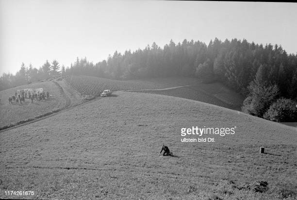 Die Natur und ihre Lebewesen werden künstlerisch verarbeitet; Willy Weber bringt Sprengladung an Metallplatte an ; Künstler vor Riesenbild #Nature...