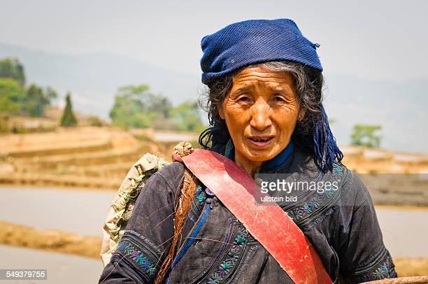 die Reisterrassen von Yuanyang Baeuerin