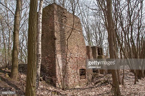 Die Reste von Gebäuden einer aus dem Jahr 1890 stammenden Ziegelei in Klausdorf am BodenGeoPfad im Landkreis TeltowFläming werden vom Wald...