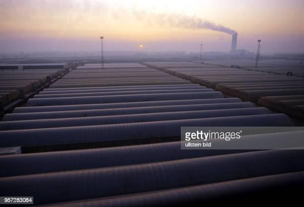 Die Sonne geht auf über der Industrielandschaft bei Vockerode im Vordergrund die Gewächshäuser des VEG Vockerode aufgenommen am Mit 64 Hektar war...