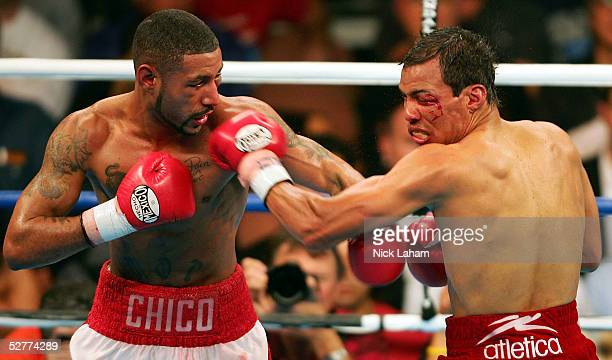Diego Corrales lands a left hook on the face of Jose Luis Castillo during their World Lightweight Unification bout on May 7 2005 at The Mandalay Bay...