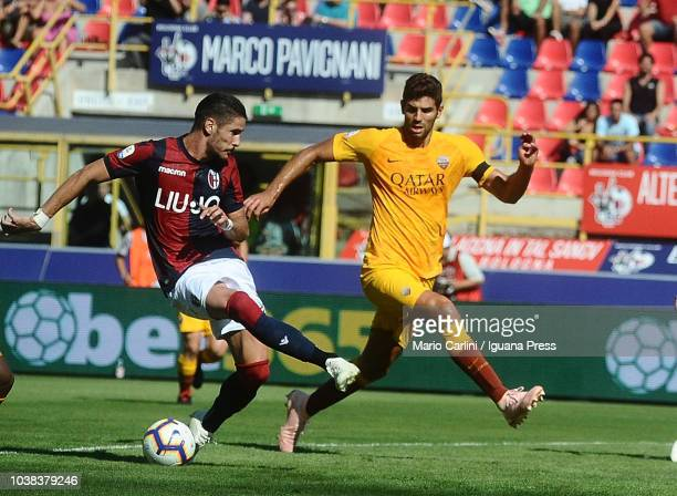 Diego Falcinelli of Bologna FC in action during the serie A match between Bologna FC and AS Roma at Stadio Renato Dall'Ara on September 23 2018 in...