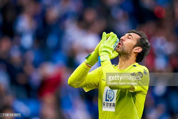 Diego Lopez of RCD Espanyol celebrates their team's first goal during the Liga match between RCD Espanyol and CA Osasuna at RCDE Stadium on December...