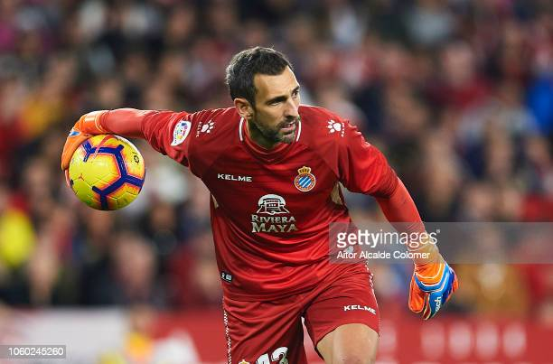 Diego Lopez of RCD Espanyol in action during the La Liga match between Sevilla FC and RCD Espanyol at Estadio Ramon Sanchez Pizjuan on November 11...