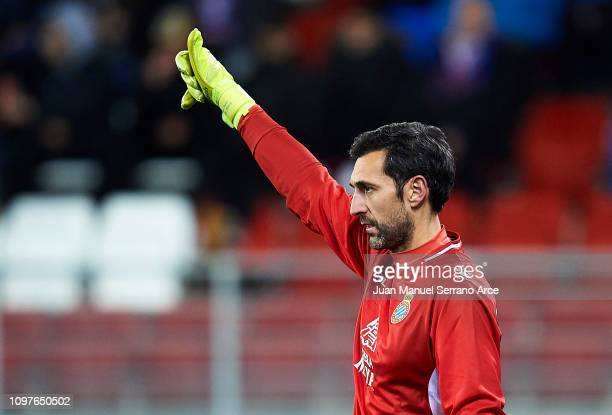Diego Lopez Rodriguez of RCD Espanyol reacts during the La Liga match between SD Eibar and RCD Espanyol at Ipurua Municipal Stadium on January 21...