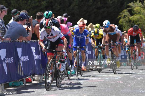 Diego Ulissi of Italy and UAE Team Emirates / during the 5th Cadel Evans Great Ocean Road Race, Elite Men a 163km race from Geelong to Geelong /...