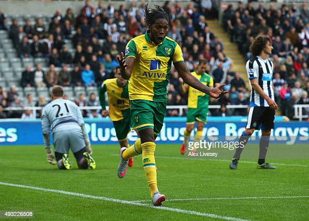 Dieumerci Mbokani of Norwich City celebrates as he scores their first and equalising goal during the Barclays Premier League match between Newcastle...