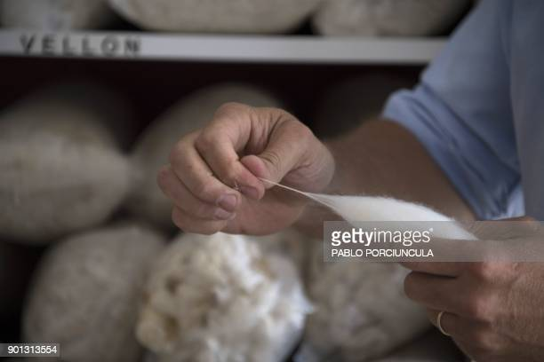 Diferent tipes of wool are seen at Tops Fray Marcos factory in Libertad San Jose 90km west from Montevideo on December 1 2017 Located between Brazil...