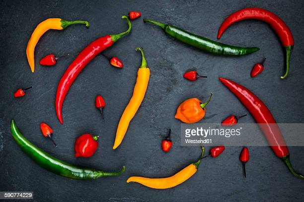 Different chili peppers on slate