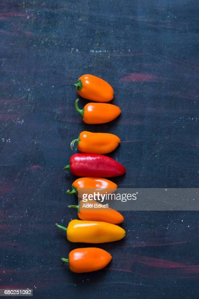 different chilli peppers