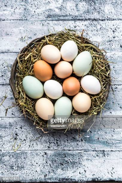 Different eggs, white, brown, light brown and green eggs