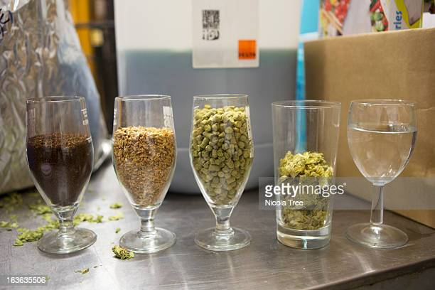 different grains and hops in a micro brewery - brewery stock pictures, royalty-free photos & images
