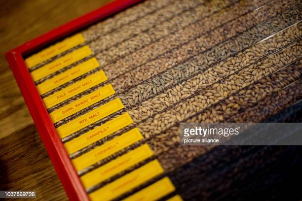 . 30 Top Different Kinds Of Beer Pictures  Photos    Images   Getty Images