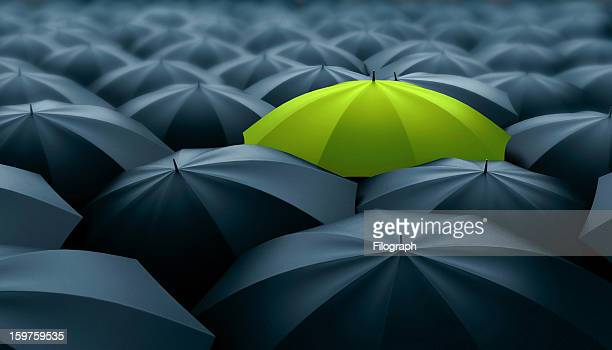 different, leader, best, unique, boss, individuality, original, special concept - umbrella stock pictures, royalty-free photos & images