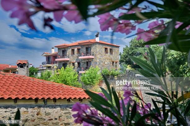 a different parthenon 10 - dimitrios tilis stock pictures, royalty-free photos & images