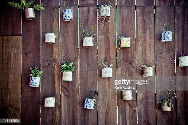 Different plantation on wooden wall, Botucatu
