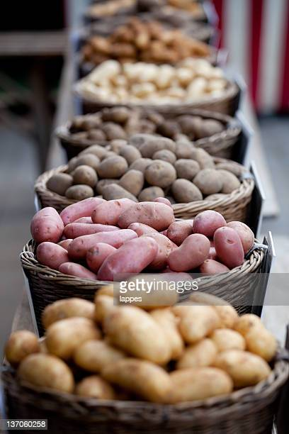 different potatoes - rauwe aardappel stockfoto's en -beelden