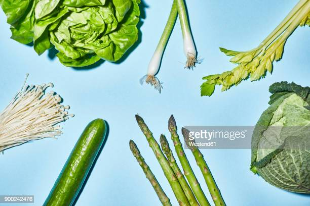 Different sorts of green vegetable on blue background