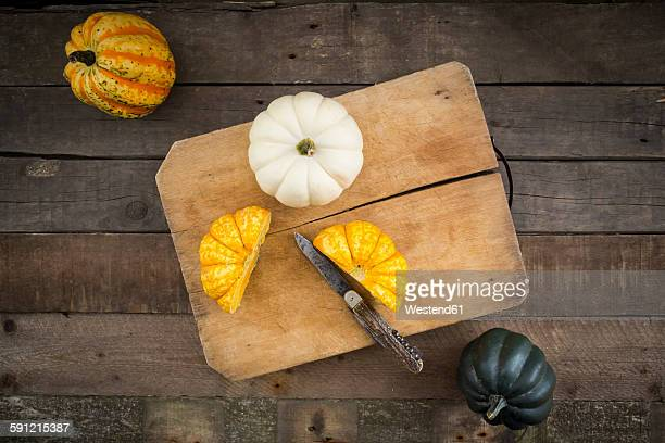 Different sorts of mini squashes