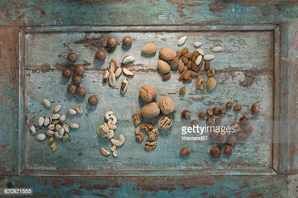 different sorts of nuts on wood - brazil nut stock photos and pictures