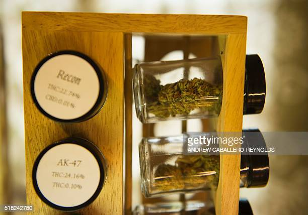 Different strains of marijuana for sale are displayed at a dispensary in Eugene Oregon on March 22 2016 Legal marijuana is becoming more and more...