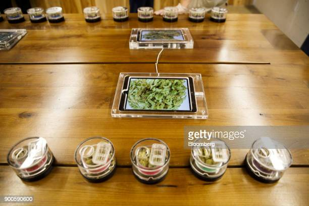 Different strands of marijuana are displayed on a table at the MedMen dispensary in West Hollywood California US on Tuesday Jan 2 2018 California...