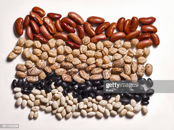 Different types of beans on white background.