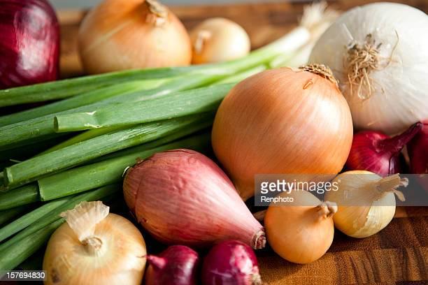 diferentes tipos de cebollas - echalote fotografías e imágenes de stock